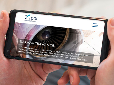 TDGI MANUTENÇÃO A.C.E website by MCBS